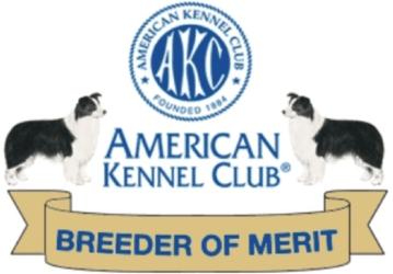 American Kennel Club Breeder of Merit